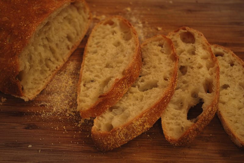 Ciabatta | A Bread A Day