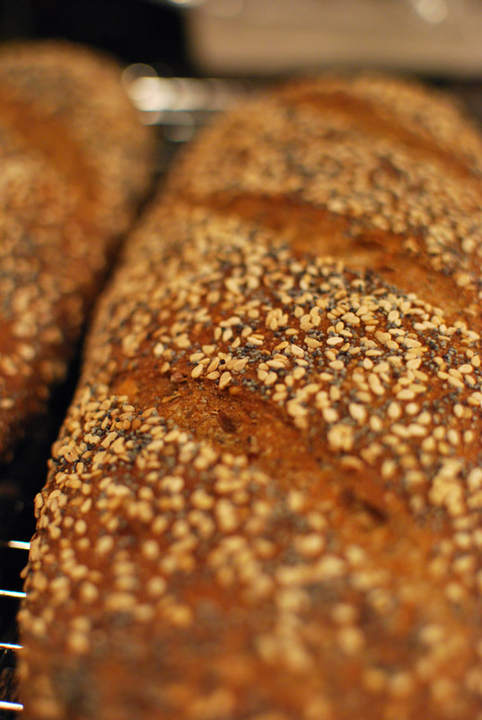 seeded-multigrain